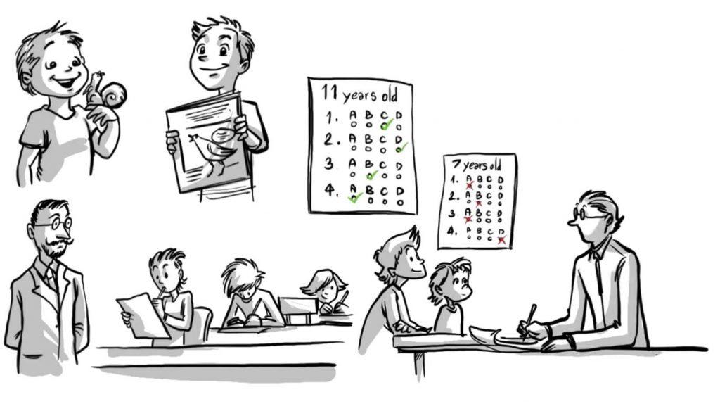 Piaget Cognitive Development - Sprouts Psychology
