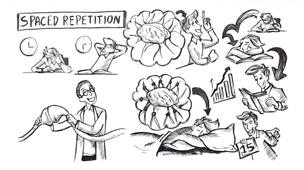 Spaced Repetition - Sprouts Study Skills